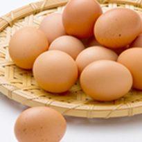 茨城県養鶏協会 青年部 水戸市 27、28日出店